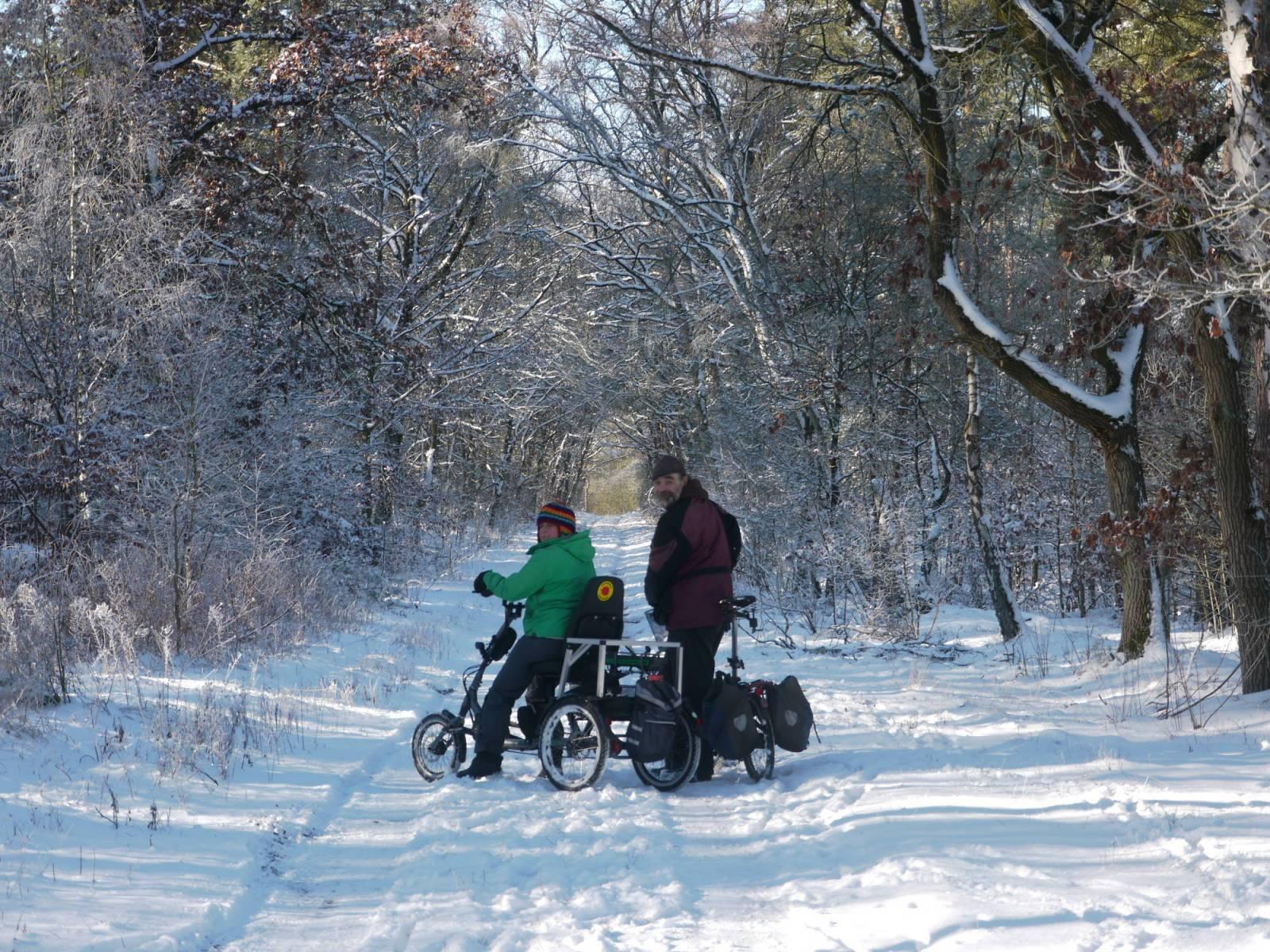 Ausflug mit Dreirad auf einem Waldweg
