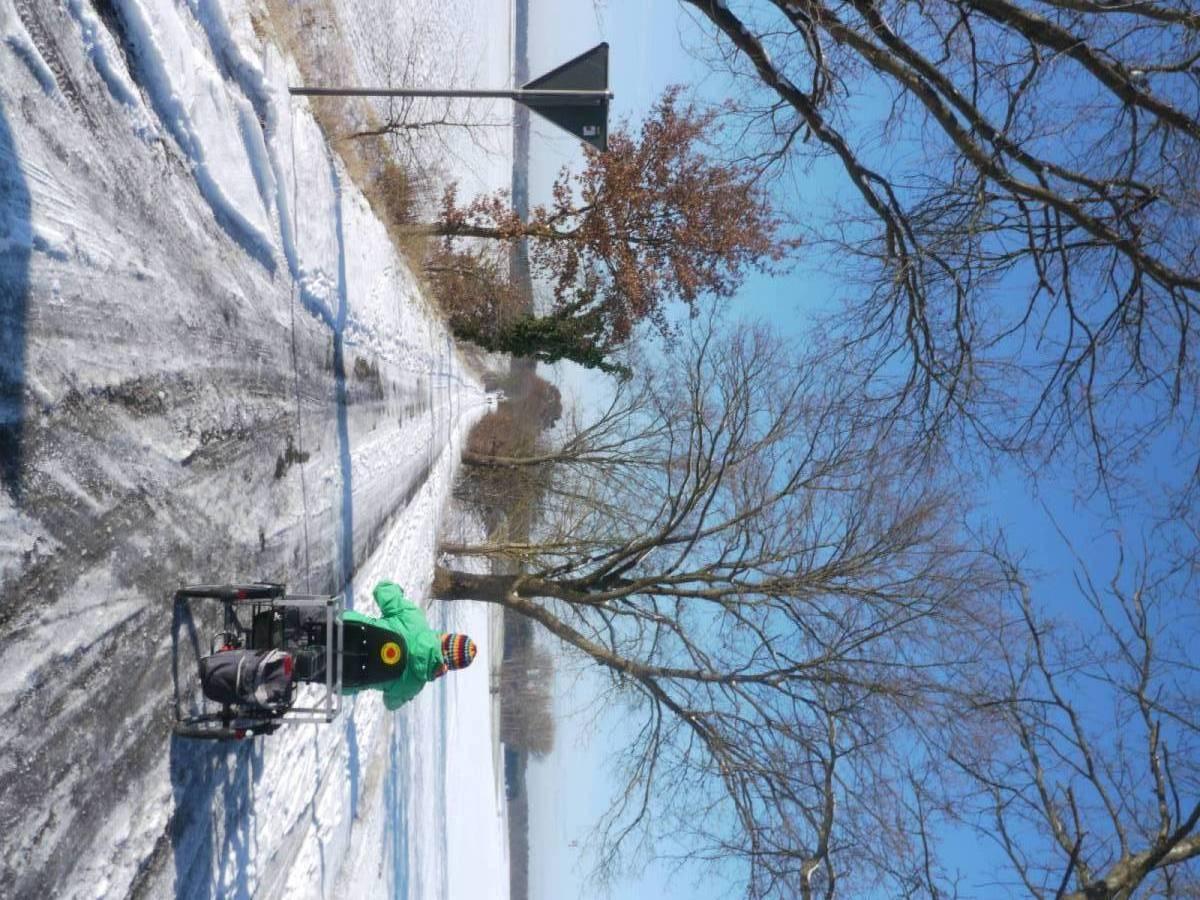 Mit dem Dreirad auf einem Waldweg