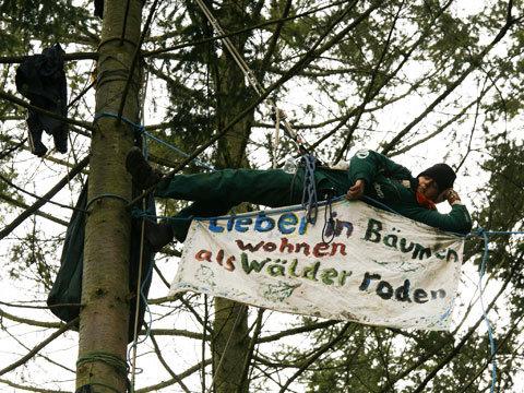 Baumbesetzung in Kelsterbach 2009 - Lieber in den Bäumen wohen als Wälder roden, steht auf dem Banner.