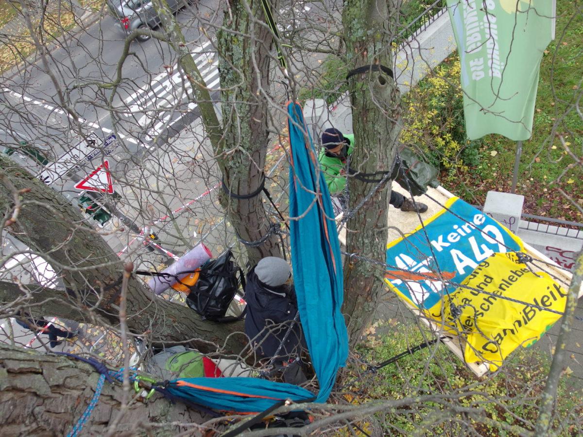 #KeineA49 #Dannibleibt – Baumbesetzung bei den Grünen