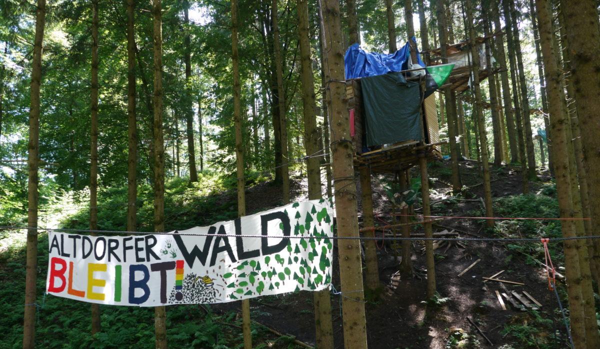 #AltiBleibt – Besuch bei der Baumbesetzung (Video + Bilder)