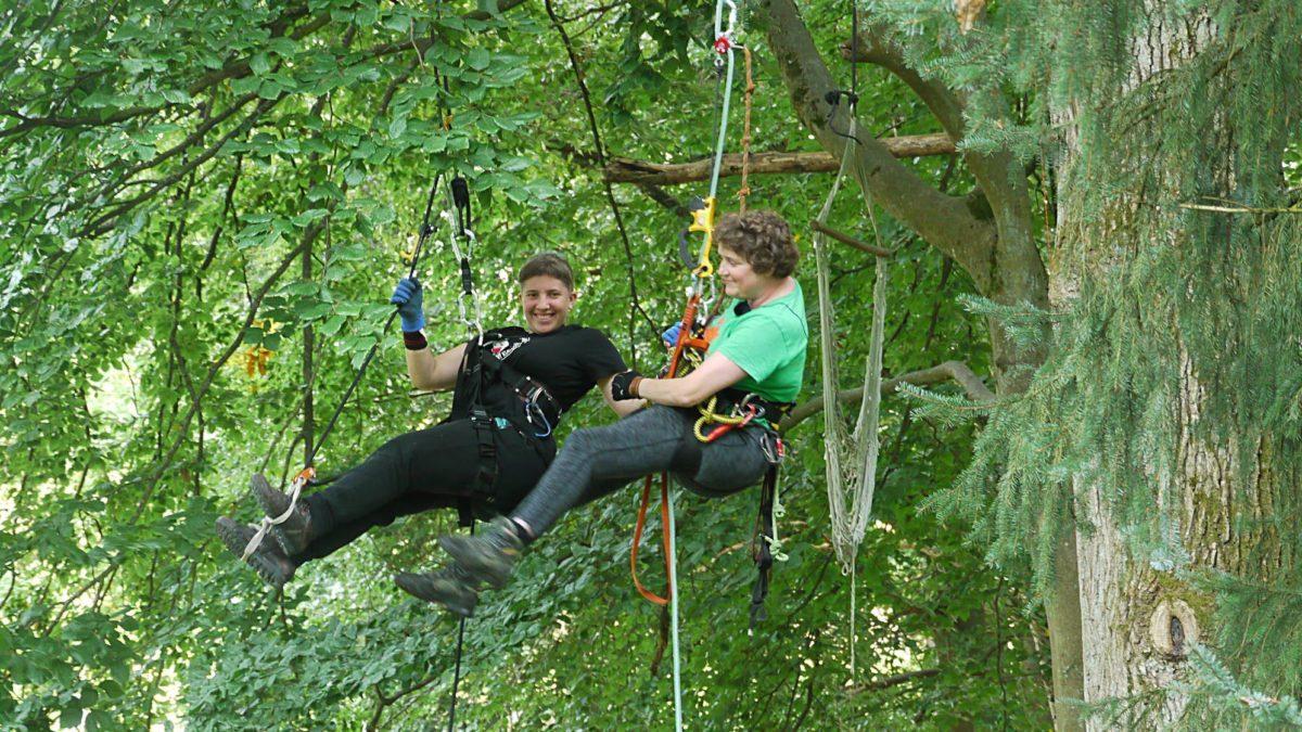 zwei Personen in in Seilen in einem Baum, sie lächeln.